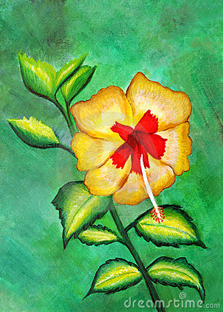 Painting of a beautiful yellow and red hibiscus