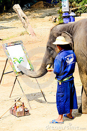 Painting colorful on white board by Elephant. Editorial Stock Image