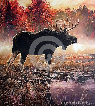 Free Painting Of A Moose Buck In A Lake On An Autumn Morning Stock Photography - 131070262