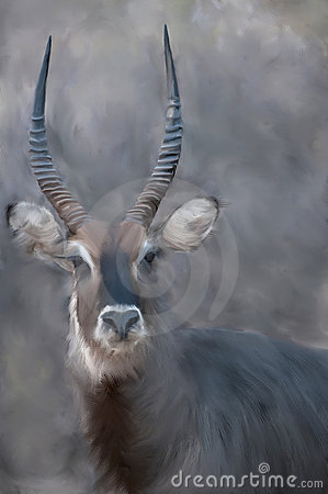Painting of a Waterbuck.