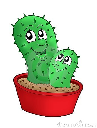 Pair of cactuses