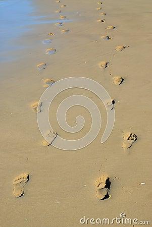 Pair of footprints