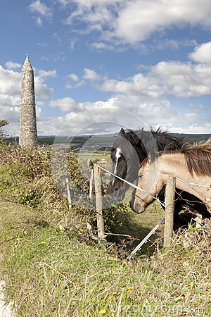 Free Pair Of Irish Horses And Ancient Round Tower Royalty Free Stock Photos - 31325148