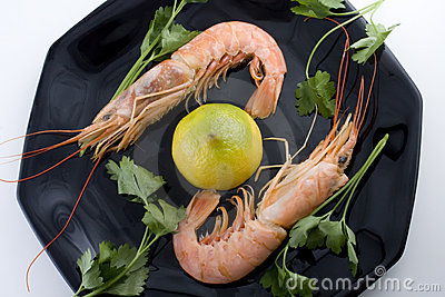 Pair of prawns