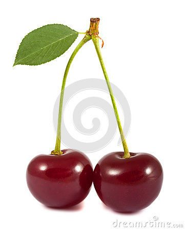 Pair of red cherries with green leaf