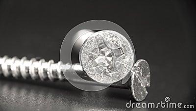 Pair of screws