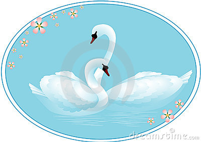 Pair of Swans in Love