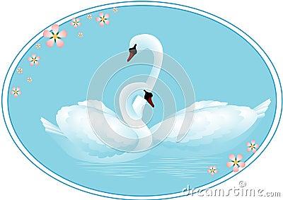 Pair of Swans in Love