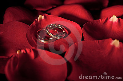 A Pair of Wedding Ring on a Rose Petal
