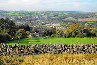 Paisagem britânica do campo: exploração agrícola e carneiros