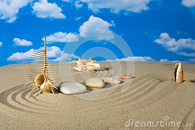 Paisagem com concha do mar e pedras no céu