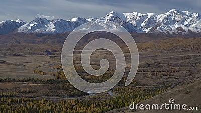 Paisagem do vale do Altai com rios e árvores Cordilheira da Sibéria vídeos de arquivo