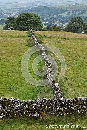 Paisagem inglesa do campo: árvore, parede drystone
