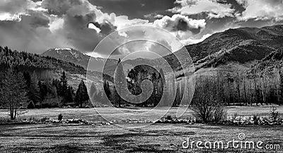 Paisagem preto e branco da montanha