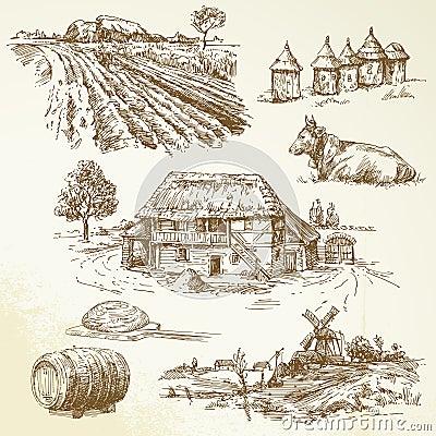Paisagem rural, agricultura, cultivando