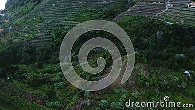 Paisagem rural no  o Vicente de SÄ, Madeira video estoque