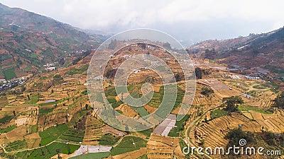 Paisagem tropical com terras agrícolas em montanhas vídeos de arquivo