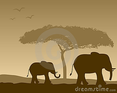 Paisaje africano y elefantes