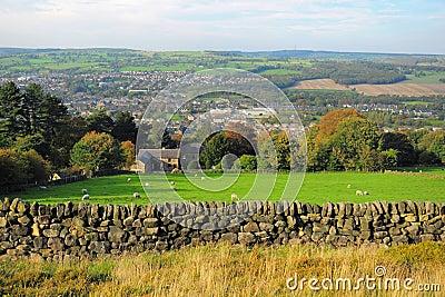Paisaje británico del campo: granja y ovejas