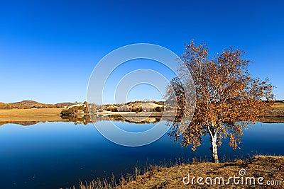 Paisaje del lago autumn