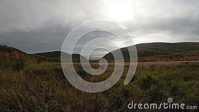 Paisaje del parque nacional de Acadia almacen de metraje de vídeo