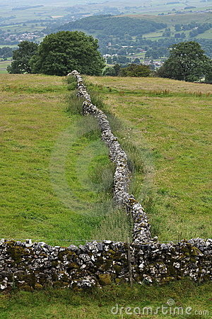 Paisaje inglés del campo: árbol, pared drystone