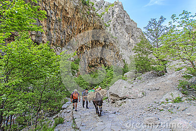 Paklenica National Park Editorial Stock Photo