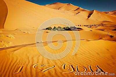 Palabras te amo escritas en las dunas de arena