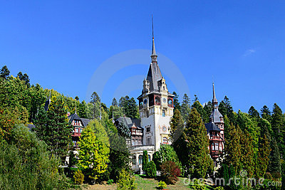 Palace In The Woods