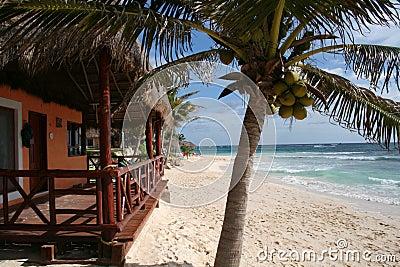 Palapa with Balcony in Playa del Carmen - Mexico