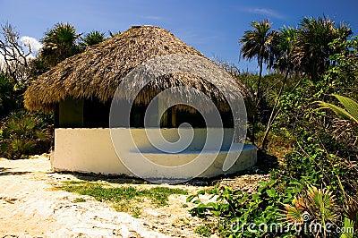 Palapa on a Beach