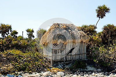 Palapa on a Beach