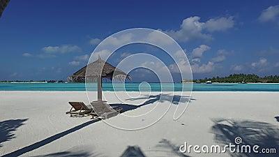 Palapa e os sunbeds pelo mar em maldives encalham video estoque