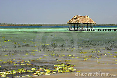 Palapa On Lake Bacalar