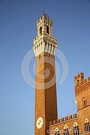 Palazzo Pubblico in Siena (Italy)