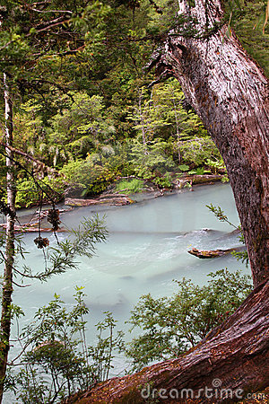 Free Pale Blue River In The Forest Royalty Free Stock Images - 13151679