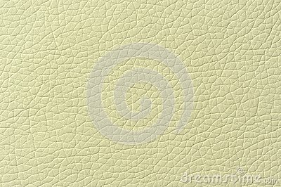 Pale Green Artificial Leather Background Texture