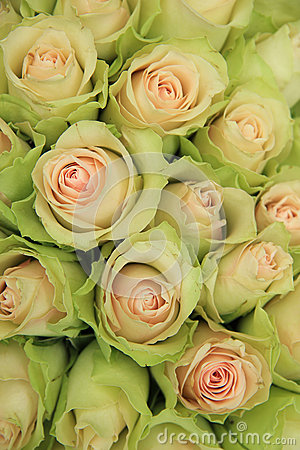 Pale pink roses in a wedding arrangement
