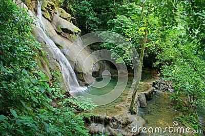 Palenque rainforest waterfall
