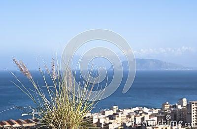 Palermo town på segla utmed kusten