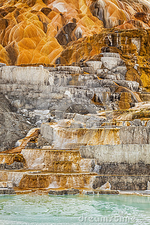 Free Palette Spring In Yellowstone Stock Photos - 35134723