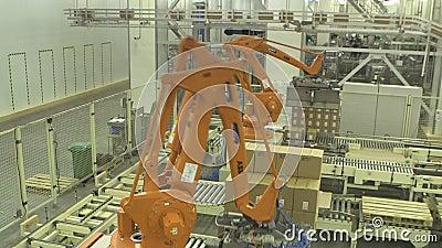 Palletising robotar 2 lager videofilmer