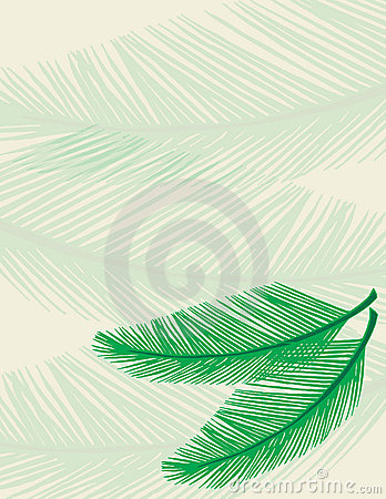 Free Palm Background Royalty Free Stock Image - 2068206