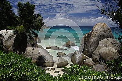 Palm beach with granite rocks, Mahe, Seychelles