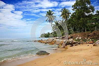 Palm Beach, Phuket Island ,Thailand