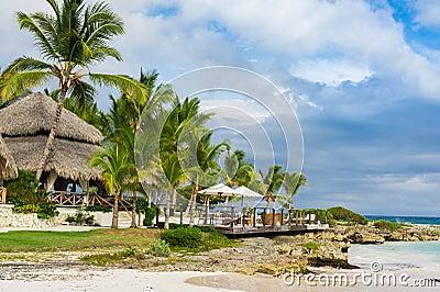 Palm en tropisch strand in Tropisch Paradijs. Zomer holyday in Dominicaanse Republiek, Seychellen, de Caraïben, Filippijnen, Baham