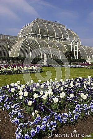 Palm house kew gardens London uk