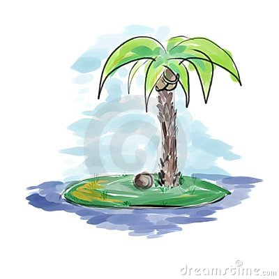 Palm at the island