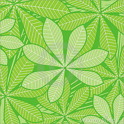 Palm leaves on green
