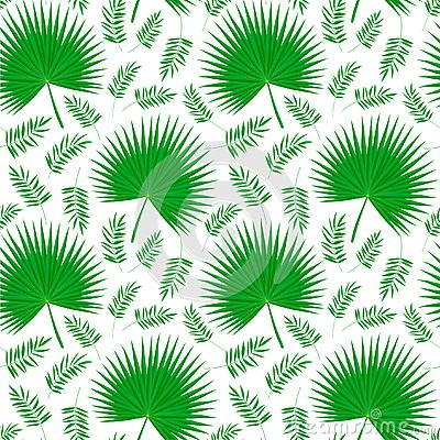 Palm leaves on white Vector Illustration